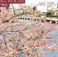 cd-sunnydaytokyo[1].jpg